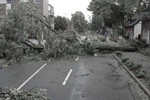 Stormschade (verkleind)